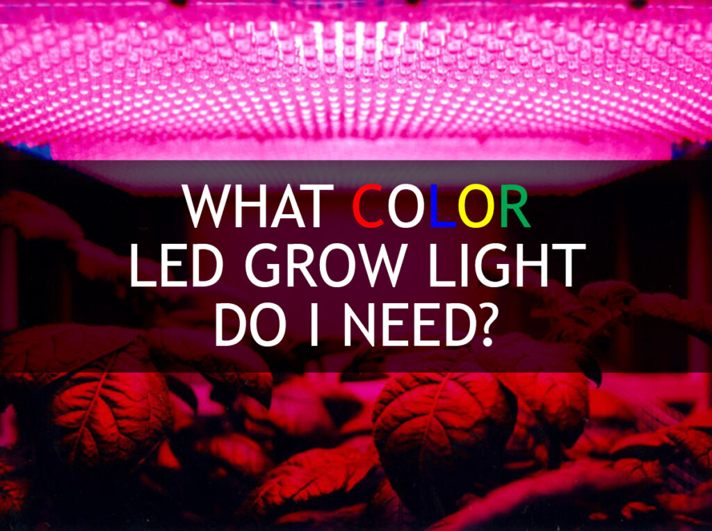 چراغ LED رشد گیاهان